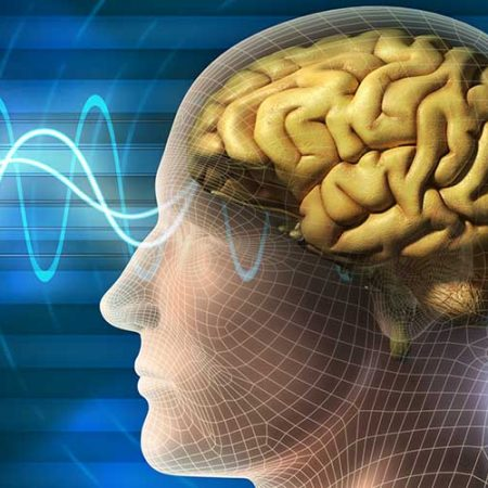 Вплив вірусу герпесу на функції головного мозку